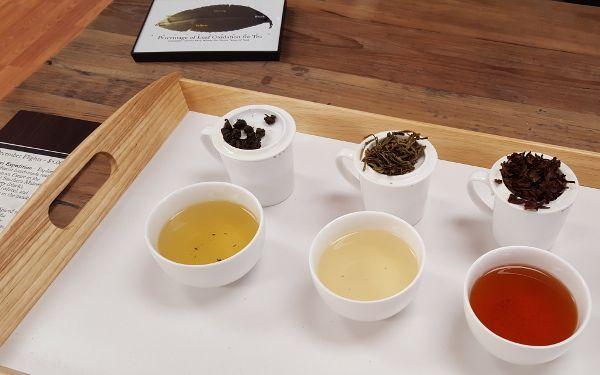 Tea Exploration and Tastings in Purcellville, VA